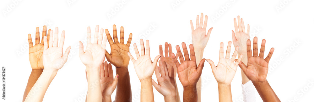 Fototapeta Multi-ethnic Young Adults' Hands
