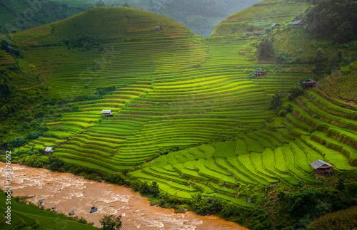 Fotobehang Rijstvelden Green Rice fields on terraced in Mu cang chai, Vietnam