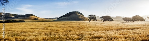 Spoed Fotobehang Landschap View of grassy landscape against sky
