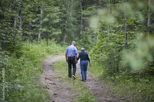 Mature couple walking a forest path Poster