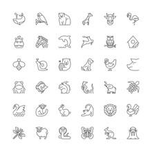Line Icons. Animals