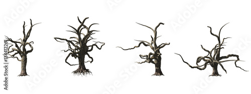 Photo  Dead tree isolated on white background