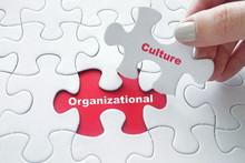 Organizational Culture On Jigs...