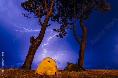 Two tents under the tree in the night  Camping in