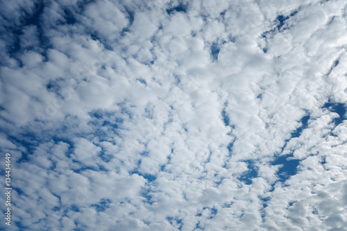 Altocumulus cloudscape on blue blue sky, Beautiful Cirrocumulus Wallpaper Mural