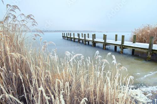 Spoed Foto op Canvas Noordzee alter Holzsteg am Ufer des Sees mit bereiften Schilf