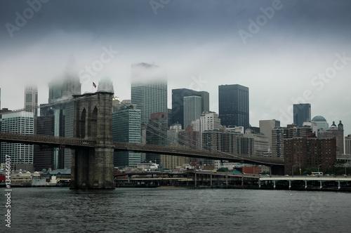 Garden Poster Buenos Aires Fog Over Lower Manhattan