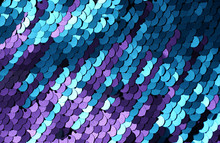 Sequins Close-up Macro. Abstra...