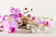Spa still life with aromatic candles, orchid flower sea shells