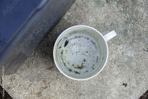 Valokuvatapetti Stagnan water in rubbish container and plastic cup potentially for musquitoes breeding ground