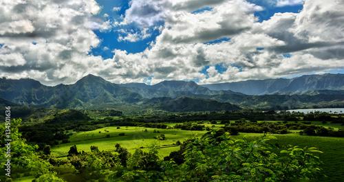 Foto op Plexiglas Europa Hanalei Kauai Hawaii Overlook