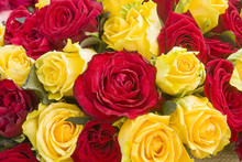 Colorful Roses Background. A Bunch Of Red And Yellow Roses Close Up.