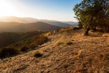 God Rays Near Carmel Valley, California.