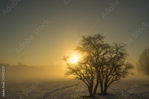 Staande foto Afrika Winterlicher Sonnenuntergang bei Nebel