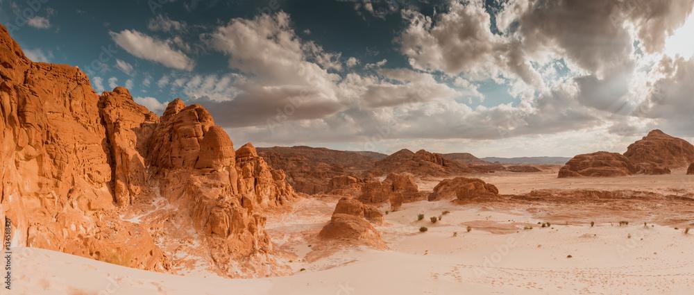 Fototapeta Panorama Sand desert Sinai, Egypt, Africa