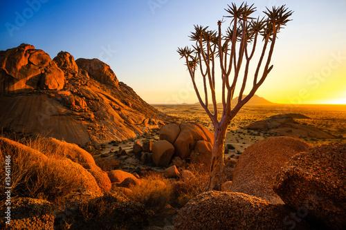 Fotografie, Obraz  Group of bald granite peaks - Spitzkoppe (Damaraland, Namibia)