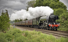 Flying Scotsman At Shere, Surr...