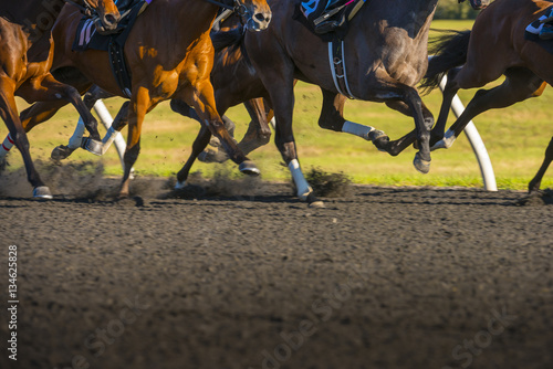 Foto Horse Race colorful bright sunlit slow shutter speed motion effect fast moving t