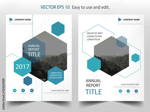Blue Hexagon Vector Business Proposal Leaflet Brochure Flyer