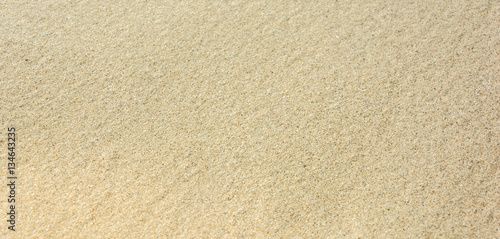 Sandy beach for background. Sand texture. Top view. Copy space.