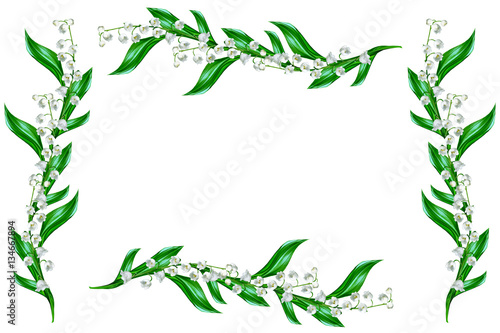 Wall Murals Lily of the valley The branch of lilies of the valley flowers isolated on white bac