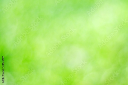 Fotografie, Obraz  Blur green tree leaves with bokeh background