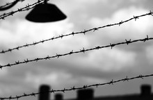 Barbed Wire To Demarcate The P...