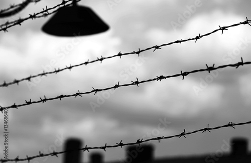 barbed wire to demarcate the prison camp Canvas Print