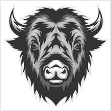 Bison Mascot Head. Black And W...