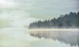 Fog and mist rises all around, partially enshrouding a waterfront deciduous Eastern Ontario forest at a lakeside. - 134747067