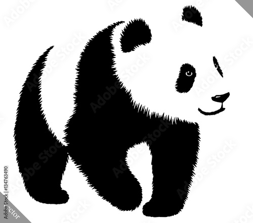Fényképezés  black and white linear paint draw panda vector illustration