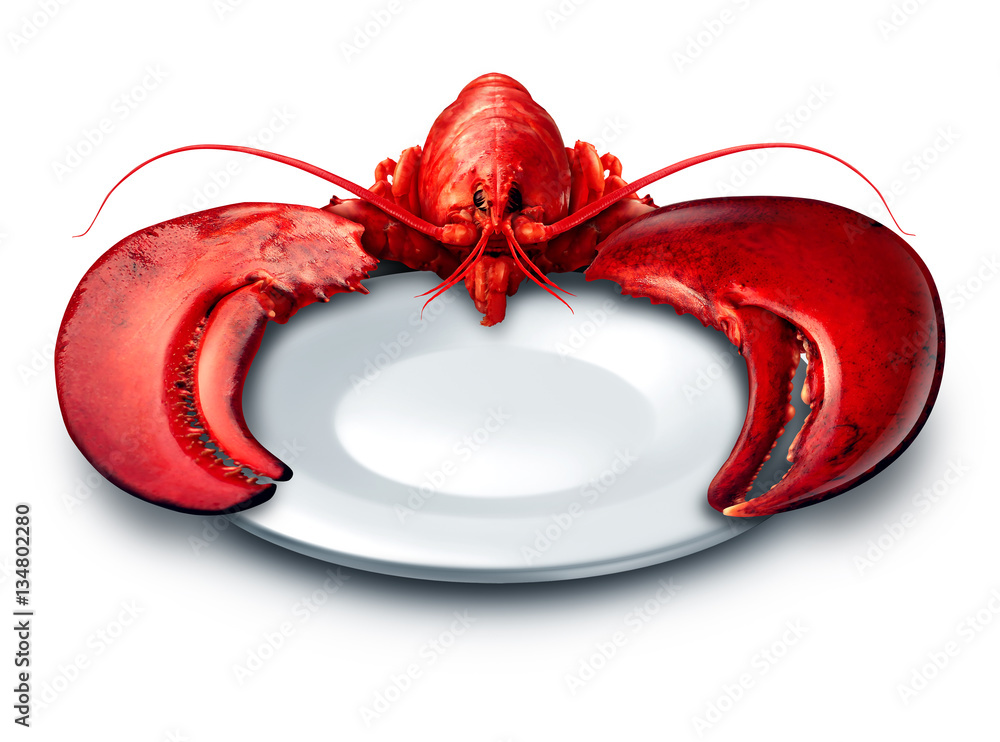 Lobster plate dinner on a white background as fresh seafood or shellfish food on a blank dish as a luxury expensive meal concept as a complete red shell crustacean holding the dishware with claws Canvas Print