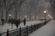 New York, USA- January 08, 2017: People walking under the first snowstorm of the year, The Mall, Central Park