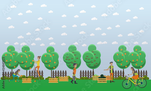 Photo Stands Birds, bees Harvesting and realization concept vector illustration in flat style.