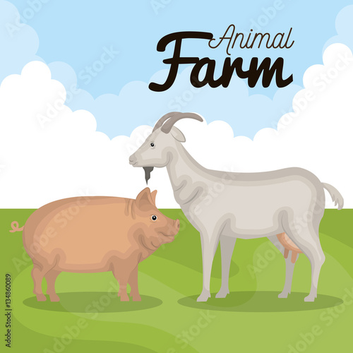 Poster Dogs animals farm in the field vector illustration design