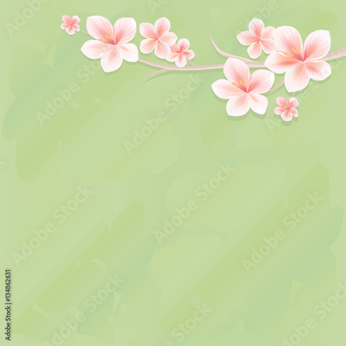 Fotobehang Zwavel geel Flowers design. Flowers background. Branches of sakura with flowers. Cherry blossom branches on green background. Vector