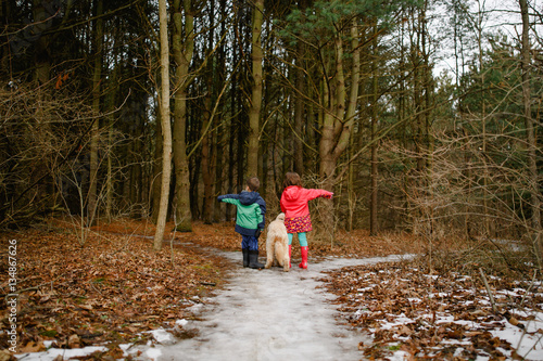 Boy, girl and dog deciding direction to woodland