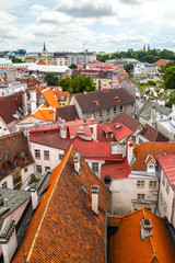 Fototapeta na wymiar Red roofs of old town Tallinn, Estonia
