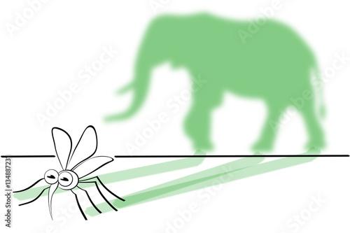 Aus Einer Mücke Einen Elefanten Machen