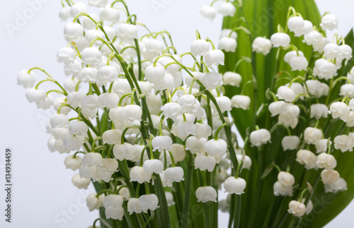 Wall Murals Lily of the valley Lily of the Valley (Convallaria Majalis) isolated on white