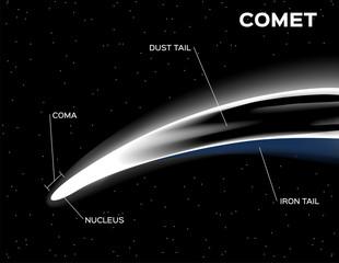comet anatomy vector