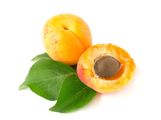 Ripe apricot with a stone and leaves, isolated on white background