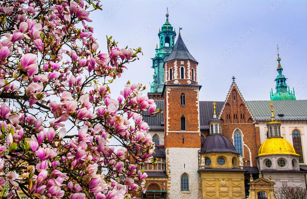 Obraz Cathedral of St Stanislaw and St Vaclav and royal castle. Krakow fototapeta, plakat