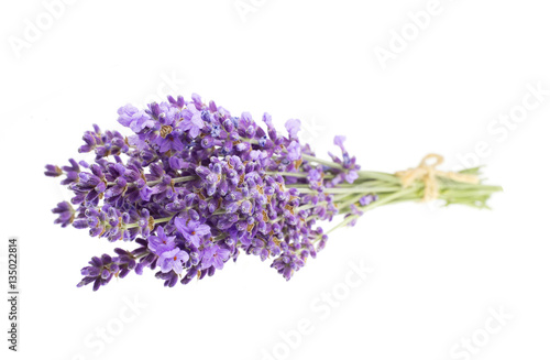 Photo  Bunch of lavender flowers on a white background.