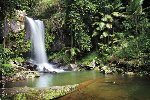 Fényképezés  Curtis Falls is a popular tourist attraction on Mount Tamborine in the Gold Coast hinterland