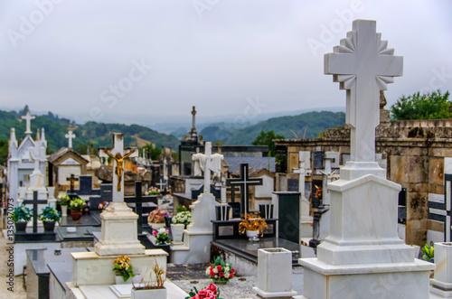 Garden Poster Barcelona Catholic cemetery christian graveyard in galicia Spain