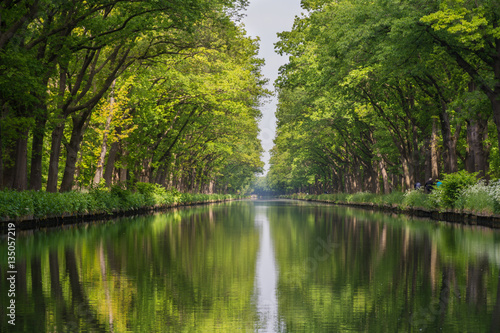 Acrylic Prints Forest river Symmetry view on flow line of men-made canal in Belgium with reflection