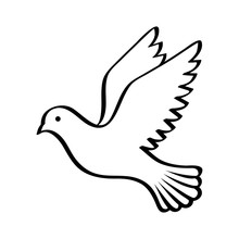 Flying Bird - Dove Or Pigeon W...