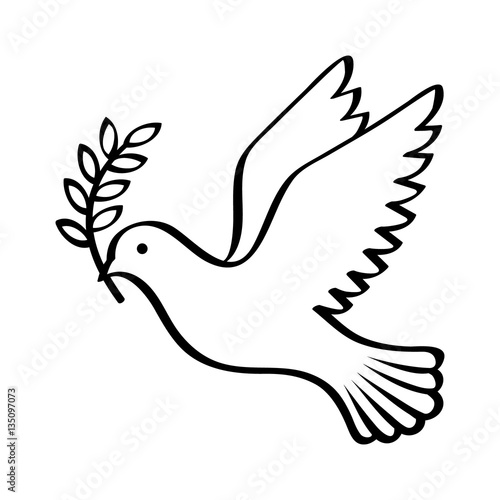 Fotografia Flying dove holding an olive branch as a sign of peace line art vector icon for