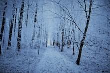 Frostig Väg